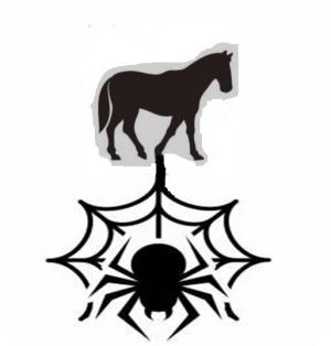 蜘蛛の巣理論 UMAGUMO