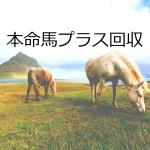 【JRA攻略】本命馬プラス回収